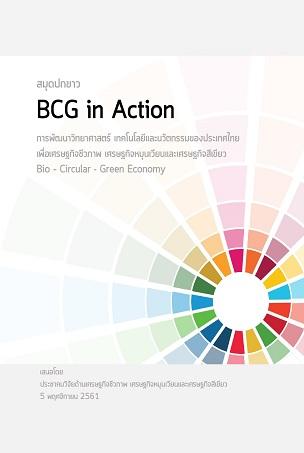 สมุดปกขาว BCG in Action